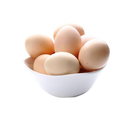苏北农家散养土鸡蛋25枚/份包邮